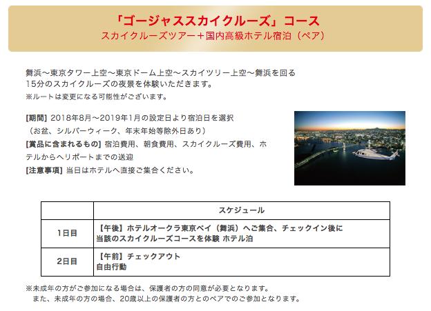 ③ ゴージャススカイクルーズコース(スカイクルーズツアー+国内高級ホテル宿泊(ペア))30名