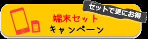 terminal set campaign