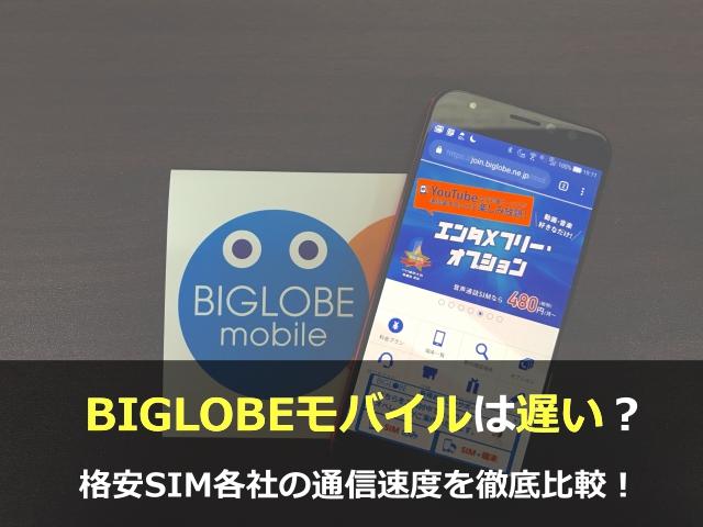 【結論】バランスの良いBIGLOBEモバイルなら間違いなし!